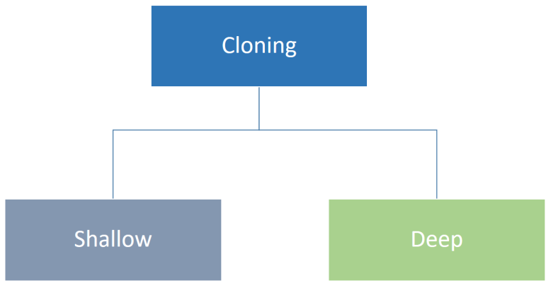Cloning Types