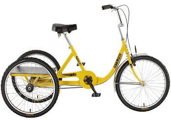 Adult Tricycle Icon