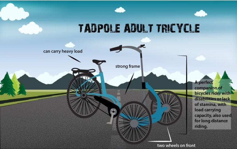 tadpole-min